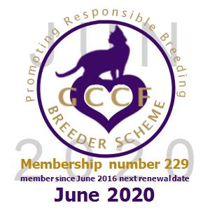 GCCF breeder0229_0620